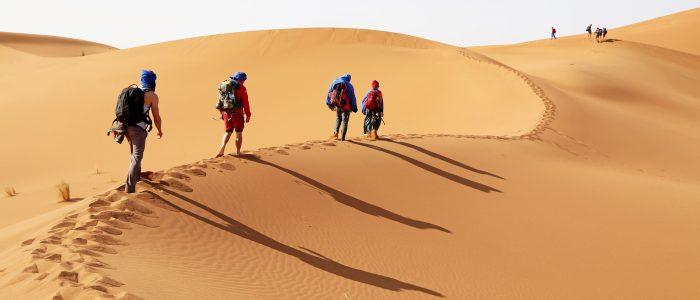 """""""Walkie-Talkie"""" in der Wüste"""